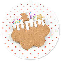 brooch christmas cookie no. 6