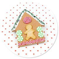 brooch gingerbread house no. 2