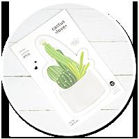 karteczki z kaktusem nr 3